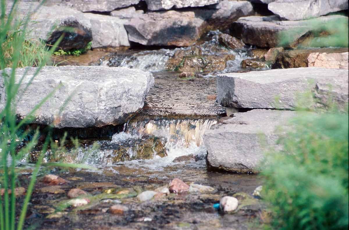 Wüteria Mineralwasser - Informationszentrale Deutsches Mineralwasser (IDM) - Wasserquelle